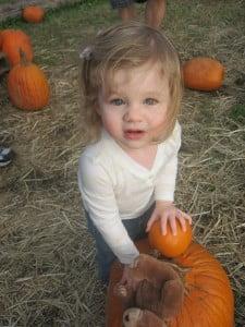 pumpkins-101117_1920