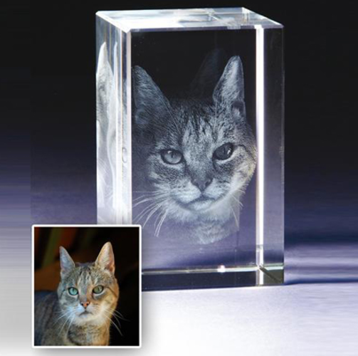 Transform your beloved pet into a 3D photo crystal.